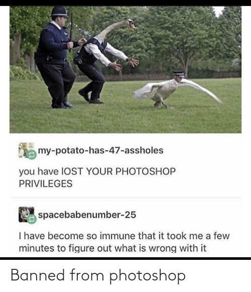 Photoshop, Banned, and From: Banned from photoshop