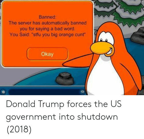 """Bad, Donald Trump, and Stfu: Banned  The server has automatically banned  you for saying a bad word.  You Said: """"stfu you big orange cunt""""  Okay Donald Trump forces the US government into shutdown (2018)"""