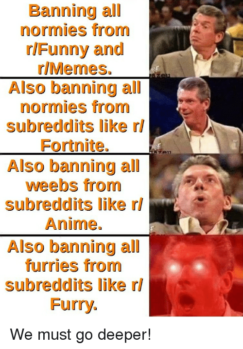 Anime, Memes, and Dank Memes: Banning all  normies from  rlFunny and  r/Memes.  Also banning all  normies from  subreddits like rl  Fortnite.  Also banning all  weebs from  subreddits like rl  Anime.  Also banning all  furries from  subreddits like rl  Furry