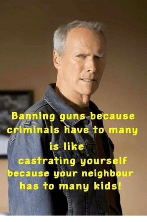 Guns, Memes, and Kids: Banning guns because  criminals have to many  is like  castrating yourself  ecause your neighbour  has to many kids