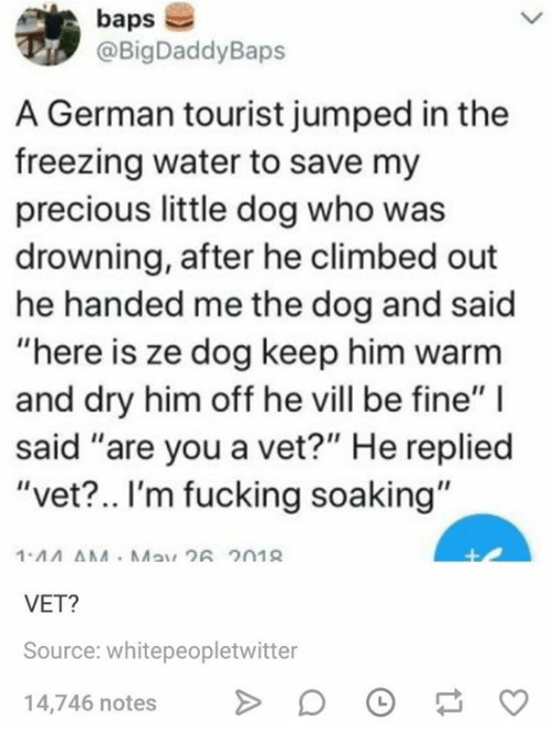 """Fucking, Precious, and Water: baps  @BigDaddyBaps  A German tourist jumped in the  freezing water to save my  precious little dog who was  drowning, after he climbed out  he handed me the dog and said  """"here is ze dog keep him warm  and dry him off he vill be fine"""" I  said """"are you a vet?"""" He replied  """"vet?.. I'm fucking soaking""""  VET?  Source: whitepeopletwitter  4,746 notes D"""