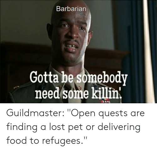 """Food, Lost, and DnD: Barbarian  Gotta be somebody  need some killin, Guildmaster: """"Open quests are finding a lost pet or delivering food to refugees."""""""