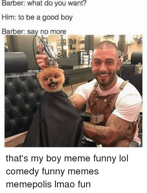 Everything Is Funny Meme : Best memes about thats my boy meme