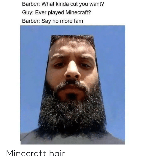 Barber What Kinda Cut You Want? Guy Ever Played Minecraft
