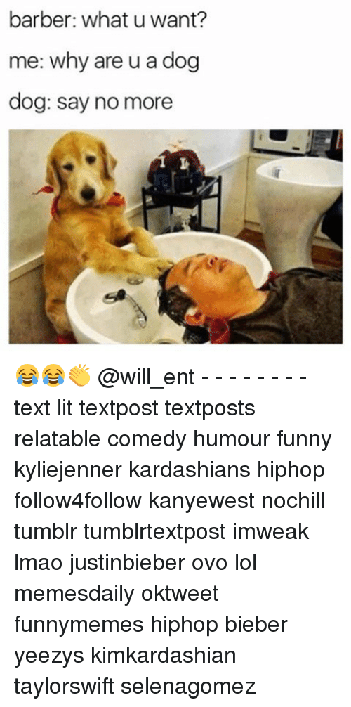 Barber, Funny, and Kardashians: barber: what u want?  me: why are u a dog  dog: say no more 😂😂👏 @will_ent - - - - - - - - text lit textpost textposts relatable comedy humour funny kyliejenner kardashians hiphop follow4follow kanyewest nochill tumblr tumblrtextpost imweak lmao justinbieber ovo lol memesdaily oktweet funnymemes hiphop bieber yeezys kimkardashian taylorswift selenagomez