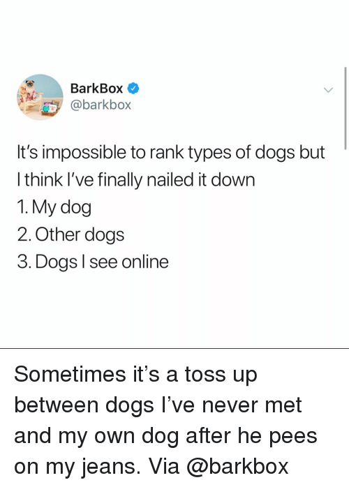 Dogs, Memes, and Never: BarkBox  @barkbox  It's impossible to rank types of dogs but  think I've finally nailed it down  1. My dog  2. Other dogs  3. Dogs l see online Sometimes it's a toss up between dogs I've never met and my own dog after he pees on my jeans. Via @barkbox