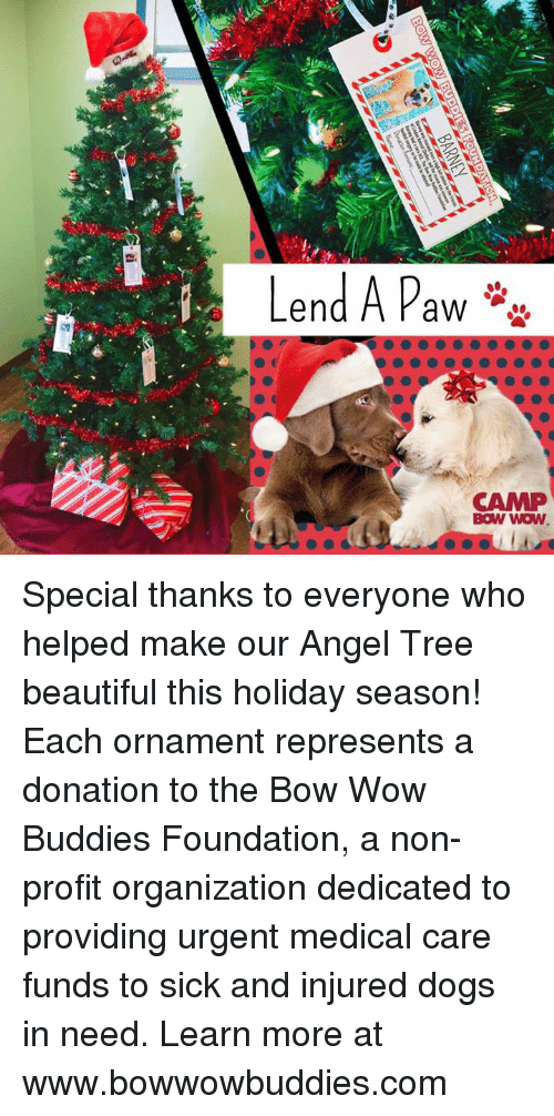 BARNEY Special Thanks to Everyone Who Helped Make Our Angel Tree ...
