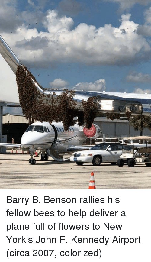 New York, John F. Kennedy, and Flowers: Barry B. Benson rallies his fellow bees to help deliver a plane full of flowers to New York's John F. Kennedy Airport (circa 2007, colorized)