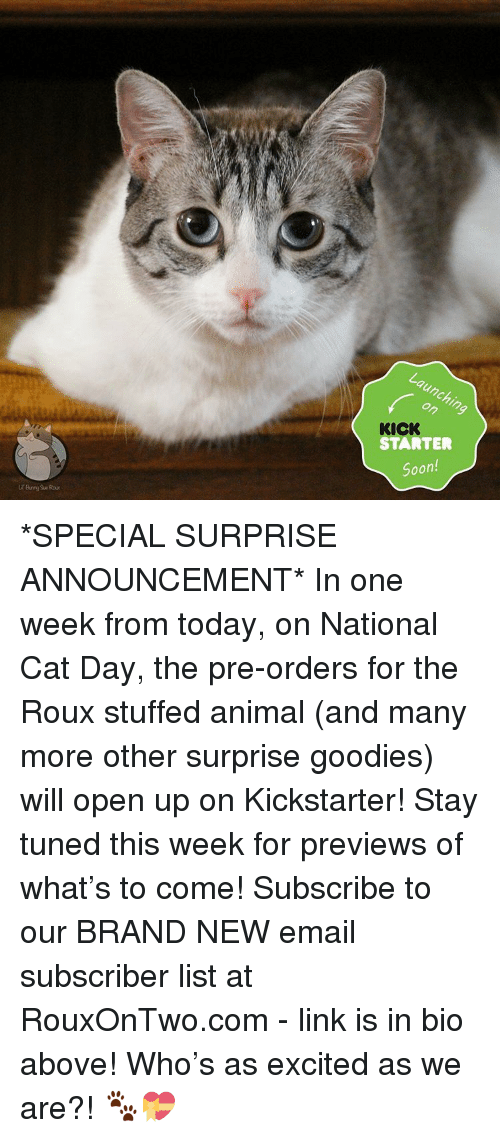 Memes, Soon..., and Email: Barry Roux  Launching  STARTER  Soon! *SPECIAL SURPRISE ANNOUNCEMENT* In one week from today, on National Cat Day, the pre-orders for the Roux stuffed animal (and many more other surprise goodies) will open up on Kickstarter! Stay tuned this week for previews of what's to come! Subscribe to our BRAND NEW email subscriber list at RouxOnTwo.com - link is in bio above! Who's as excited as we are?! 🐾💝