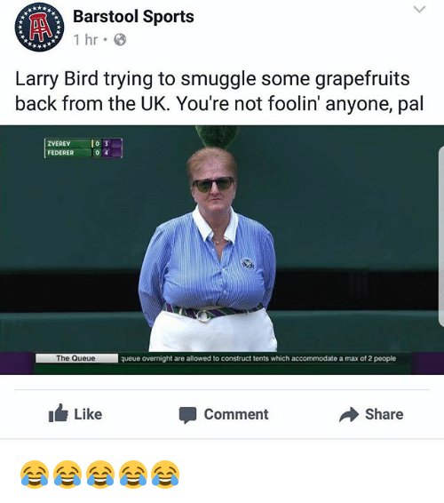 Memes, Sports, and Larry Bird: Barstol Sports  Barstool Sports  Larry Bird trying to smuggle some grapefruits  back from the UK. You're not foolin' anyone, pal  ZVEREV o  FEDERER  0 4  The Queue  queue overnight are allowed to construct tents which accommodate a max of 2 people  ILike  Comment  Share 😂😂😂😂😂