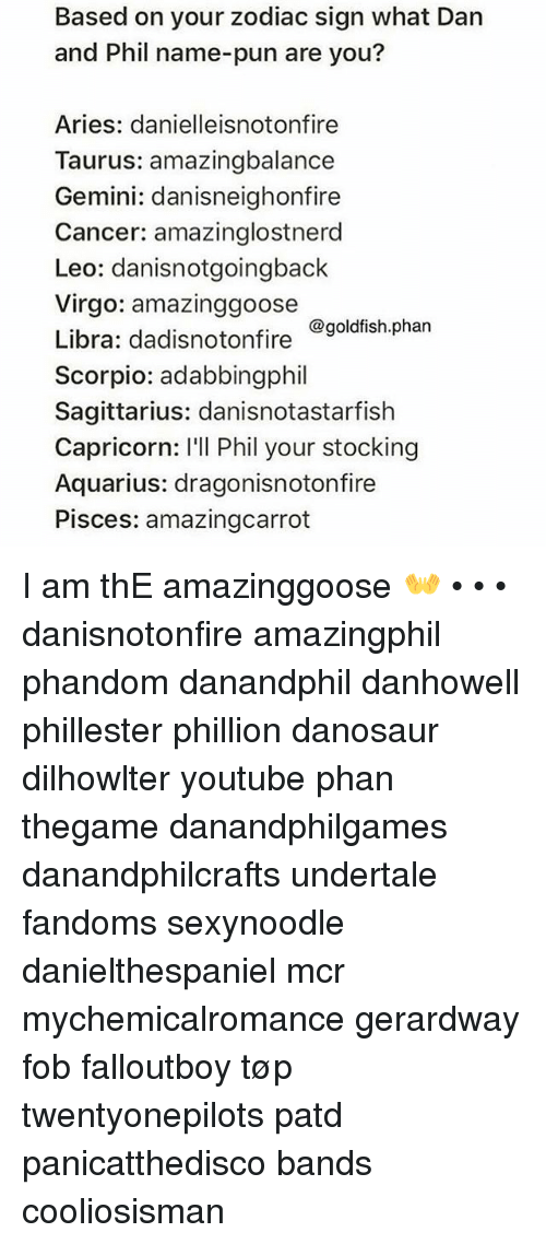 Based On Your Zodiac Sign What Dan And Phil Name Pun Are You Aries