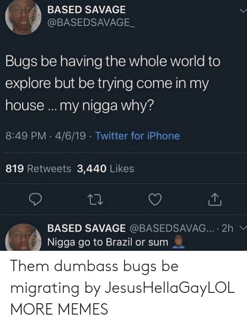 Dank, Iphone, and Memes: BASED SAVAGE  @BASEDSAVAGE  Bugs be having the whole world to  explore but be trying come in my  house... my nigga why?  8:49 PM 4/6/19 Twitter for iPhone  819 Retweets 3,440 Likes  BASED SAVAGE @BASEDSAVAG... 2h  Nigga go to Brazil or sum Them dumbass bugs be migrating by JesusHellaGayLOL MORE MEMES