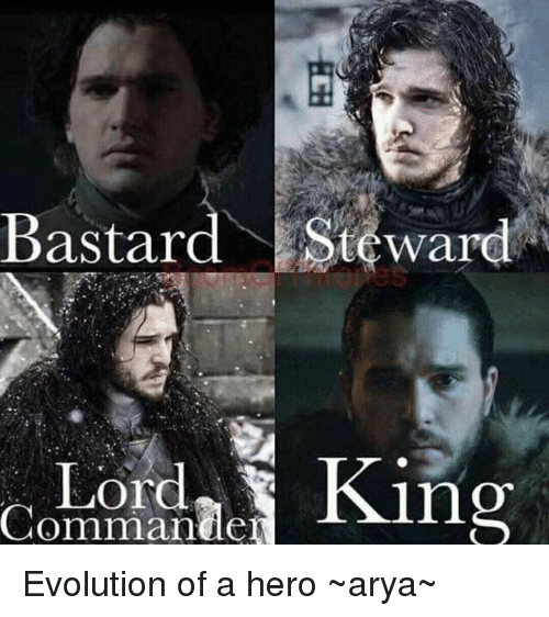 bastard steward lord commander evolution of a hero ~arya~ 13175273 ✅ 25 best memes about memes memes, meme generator,Memes Evolution