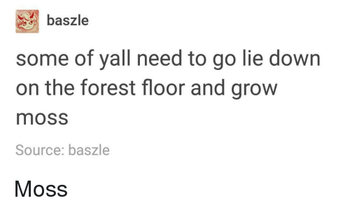 The Forest, Forest, and Source: baszle  some of yall need to go lie down  on the forest floor and grow  moss  Source: baszle Moss