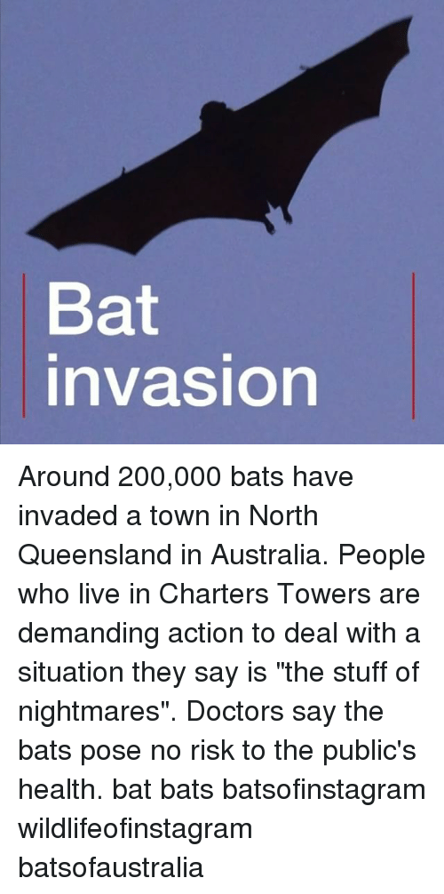 "Bailey Jay, Memes, and Australia: Bat  nvasion Around 200,000 bats have invaded a town in North Queensland in Australia. People who live in Charters Towers are demanding action to deal with a situation they say is ""the stuff of nightmares"". Doctors say the bats pose no risk to the public's health. bat bats batsofinstagram wildlifeofinstagram batsofaustralia"