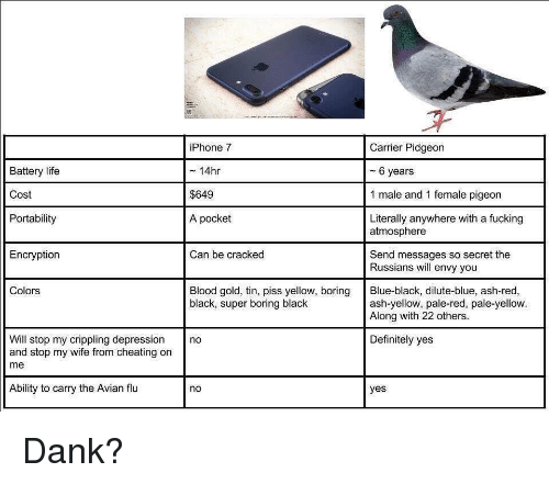 Ash, Cheating, and Dank: Battery life  Cost  Portability  iPhone 7  ~ 14hr  $649  A pocket  Carrier Pidgeon  - 6 years  1 male and 1 female pigeon  Literally anywhere with a fucking  atmosphere  Encryption  Can be cracked  Send messages so secret the  Russians will envy you  Colors  Blood gold, tin, piss yellow, boring Blue-black, dilute-blue, ash-red,  black, super boring black  ash-yellow, pale-red, pale-yellow.  Along with 22 others  Will stop my crippling depression no  and stop my wife from cheating on  me  Definitely yes  Ability to carry the Avian flu  no  yes <p>Dank?</p>