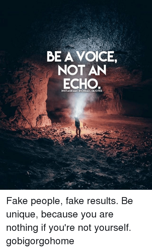 Be A Voice Not An Echo Instagramirichdad Quotes Fake People Fake