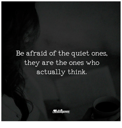 Be Afraid Of The Quiet Ones They Are The Ones Who Actually