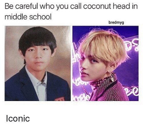 Memes, Iconic, and Be Careful: Be careful who you call coconut head in  middle school  bredmyg Iconic