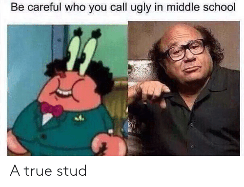 School, True, and Ugly: Be careful who you call ugly in middle school A true stud