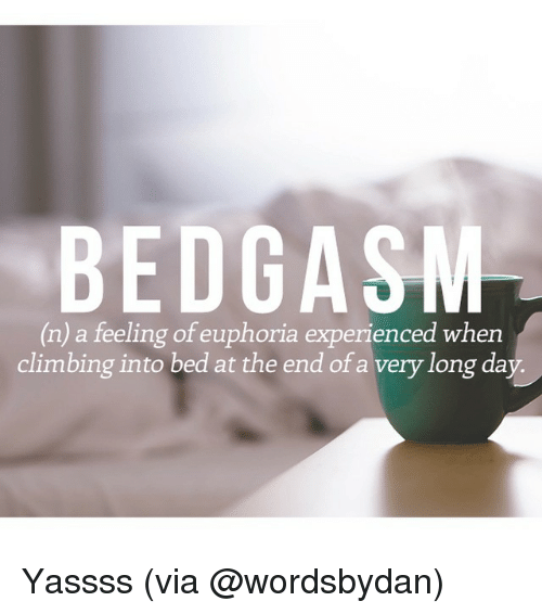 Relatable, Euphoria, and Beds: BE DGASM  (n) a feeling of euphoria experienced when  climbing into bed at the end of a very long day. Yassss (via @wordsbydan)