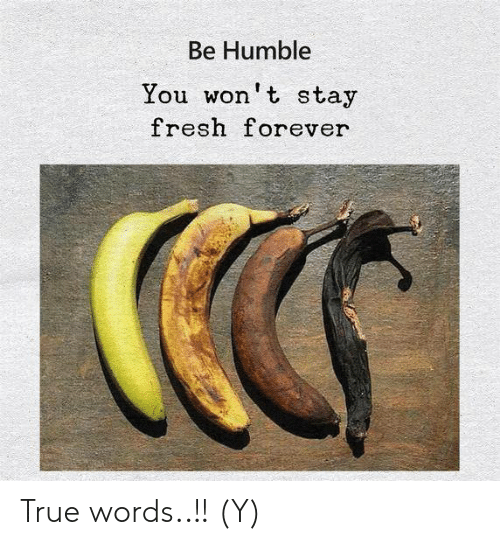 Fresh, Memes, and True: Be Humble  You won't stay  fresh forever True words..!! (Y)