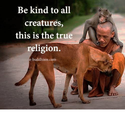 Memes, True, and True Religion: Be kind to all  creatures,  this is the true  religion  e-buddhism.com