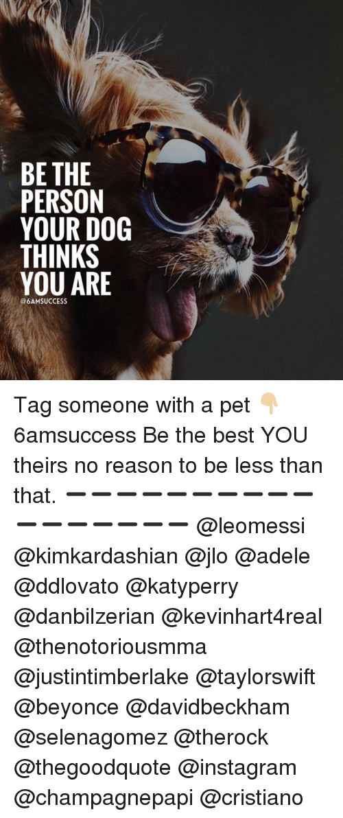 JLo, Memes, and Pets: BE THE  PERSON  YOUR DOG  THINKS  YOU ARE  @6AMSUCCESS Tag someone with a pet 👇🏼 6amsuccess Be the best YOU theirs no reason to be less than that. ➖➖➖➖➖➖➖➖➖➖➖➖➖➖➖➖➖ @leomessi @kimkardashian @jlo @adele @ddlovato @katyperry @danbilzerian @kevinhart4real @thenotoriousmma @justintimberlake @taylorswift @beyonce @davidbeckham @selenagomez @therock @thegoodquote @instagram @champagnepapi @cristiano