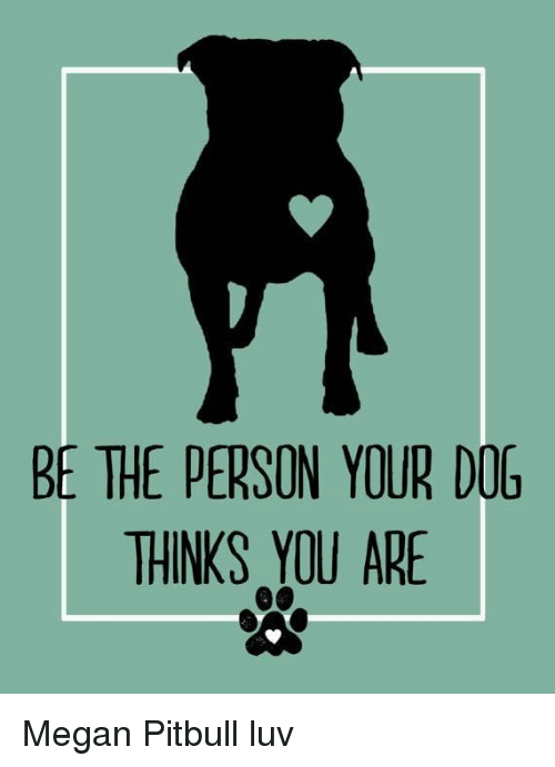 BE THE PERSON YOUR DOG THINKS YOU ARE Megan Pitbull Luv | Megan Meme