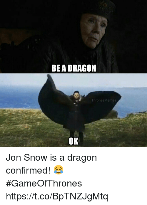 Memes, Jon Snow, and Snow: BEA DRAGON  Thr  onesMemes  OK Jon Snow is a dragon confirmed!  😂 #GameOfThrones https://t.co/BpTNZJgMtq