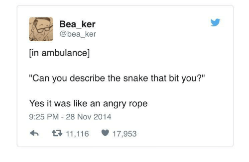 "Snake, Angry, and Yes: Bea_ker  @bea ker  [in ambulance]  ""Can you describe the snake that bit you?""  Yes it was like an angry rope  9:25 PM 28 Nov 2014  h11,116 17,953"