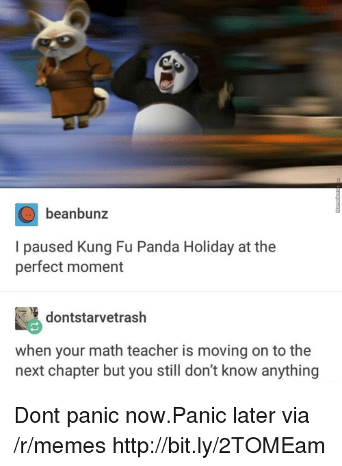 Memes, Teacher, and Panda: beanbunz  I paused Kung Fu Panda Holiday at the  perfect moment  dontstarvetrash  when your math teacher is moving on to the  next chapter but you still don't know anything Dont panic now.Panic later via /r/memes http://bit.ly/2TOMEam