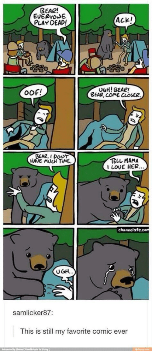 Love, Bear, and Time: BEAR!  EUEPYOSE  PLAY DEAD!  Ackl  I-  OOF!  UGH! BEAR!  BEAR, COME CLOSE  GEA2, I DONT  HAVE MUCH TiME.  TELL MAMA  LOVE HER.  els  channelate.com  UGH.  samlicker87:  This is still my favorite comic ever  Reinvented by Thellest hinlǐPosts for Flay :)