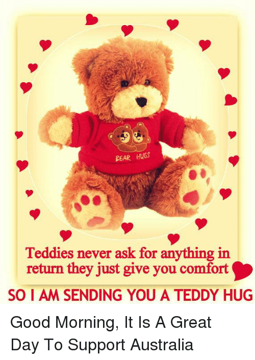Bear Hugs Teddies Never Ask For Anything In Return They Just Give