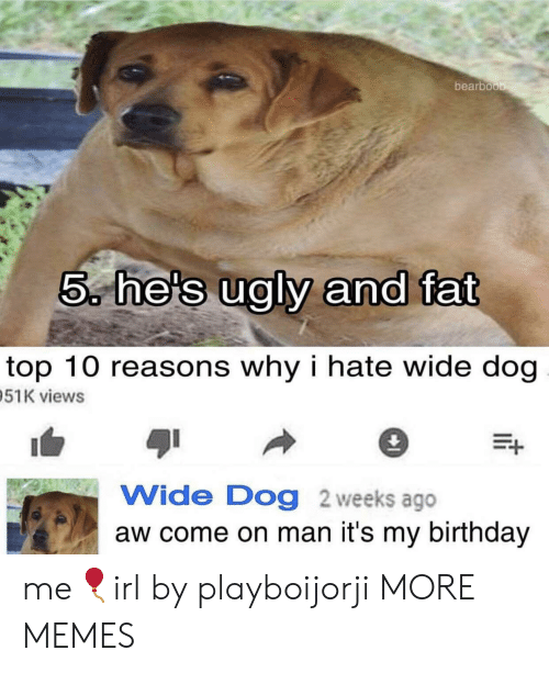 Birthday, Dank, and Memes: bearboo  5, he's ualv and fat  top 10 reasons why i hate wide dog  51K views  Wide Dog 2 weeks ago  aw come on man it's my birthday me🎈irl by playboijorji MORE MEMES