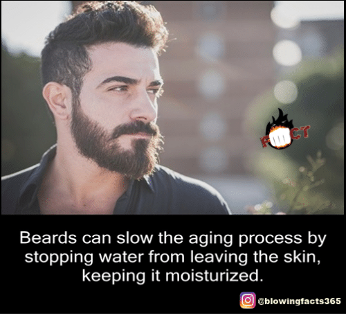 Memes, Water, and Beards: Beards can slow the aging process by  stopping water from leaving the skin,  keeping it moisturized  O @blowingfacts365