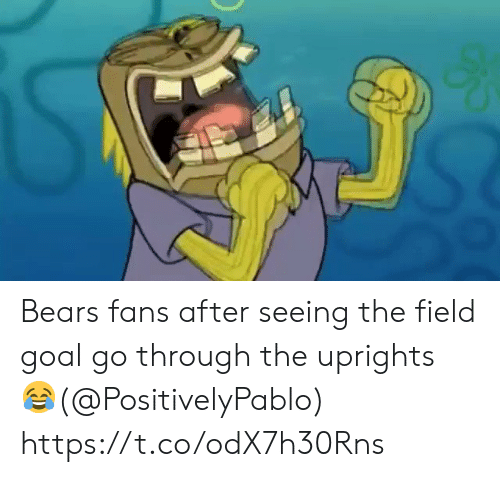 Football, Nfl, and Sports: Bears fans after seeing the field goal go through the uprights 😂(@PositivelyPablo)  https://t.co/odX7h30Rns