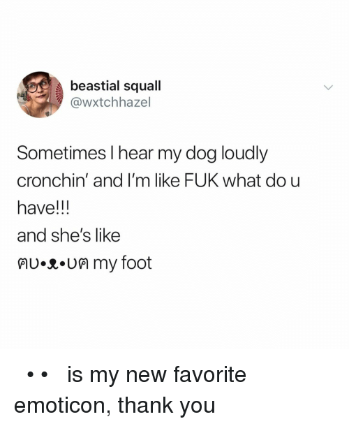 Thank You, Relatable, and Dog: beastial squall  @wxtchhazel  Sometimes l hear my dog loudly  cronchin' and I'm like FUK what dou  have!!  and she's like  lU.R.UM my foot ฅʋ•ᴥ•ʋฅ is my new favorite emoticon, thank you