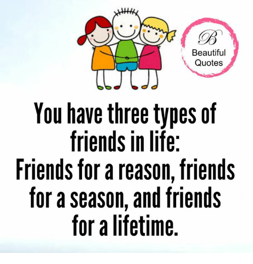 Beautiful Quotes You Have Three Types Of Friends In Life Friends For