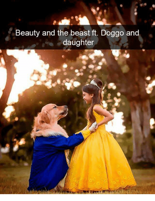 Memes, Beauty and the Beast, and 🤖: Beauty and the beast ft. Doggo and  daughter