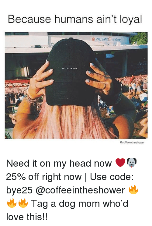 Head, Love, and Memes: Because humans ain't loyal  DOG MOM  A.s  @coffeeintheshower Need it on my head now ❤️🐶 25% off right now | Use code: bye25 @coffeeintheshower 🔥🔥🔥 Tag a dog mom who'd love this!!