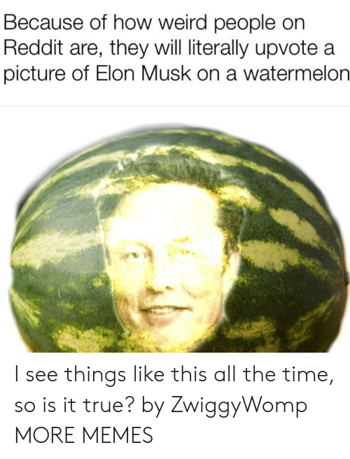 Dank, Memes, and Reddit: Because of how weird people on  Reddit are, they will literally upvote a  picture of Elon Musk on a watermelon I see things like this all the time, so is it true? by ZwiggyWomp MORE MEMES