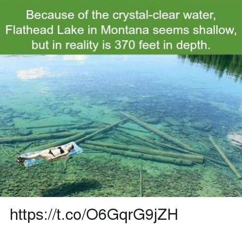 Montana, Water, and Reality: Because of the crystal-clear water,  Flathead Lake in Montana seems shallow  but in reality is 370 feet in depth. https://t.co/O6GqrG9jZH