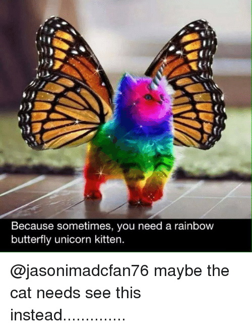 Memes, Butterfly, and 🤖: Because sometimes, you need a rainbow  butterfly unicorn kitten. @jasonimadcfan76 maybe the cat needs see this instead..............