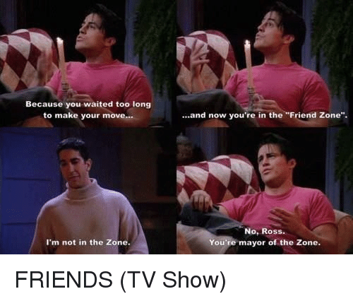 "Friends (TV Show), Memes, and TV Shows: Because you waited too long  to make your move...  I'm not in the Zone.  and now you're in the ""Friend Zone"".  No, Ross.  You're mayor of the Zone. FRIENDS (TV Show)"