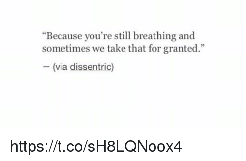 """Girl Memes, Coeds, and Yours: """"Because you're still breathing and  sometimes we take that for granted.""""  Via  dissentric) https://t.co/sH8LQNoox4"""