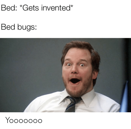 Bed Bugs, Bed, and Bugs: Bed: *Gets invented*  Bed bugs: Yooooooo
