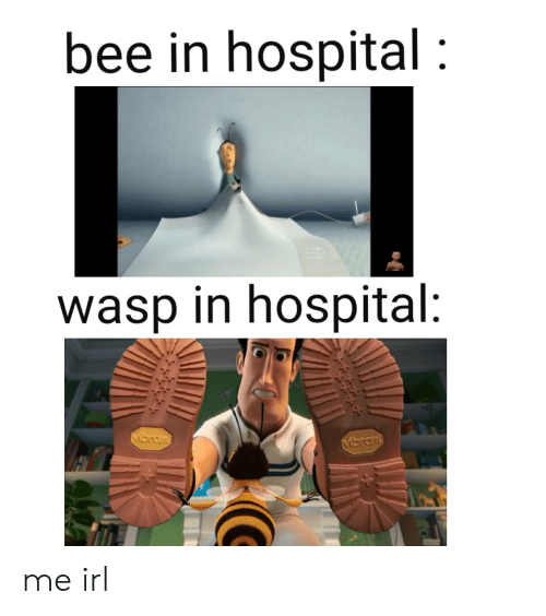 Hospital, Irl, and Me IRL: bee in hospital  wasp in hospital: me irl