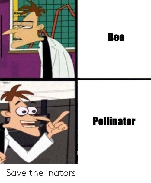 Reddit, Bee, and The: Bee  Pollinator Save the inators