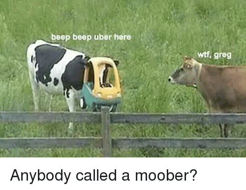 Dank, Uber, and Wtf: beep beep uber here  wtf, greg Anybody called a moober?